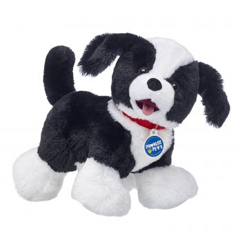 PROMISE PETS BORDER COLLIE