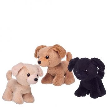 PROMISE PETS MINI - ASSORTED *Each sold separately